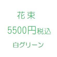 花プレゼント白5500円